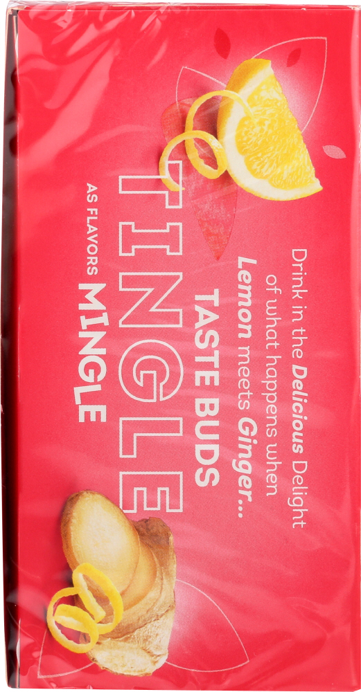 LIPTON: Tea Herbal Lemon Ginger, 20 bg